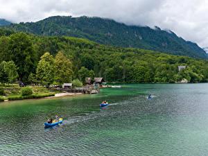 Картинка Словения Озеро Горы Леса Побережье Лодки Lake Bohinj