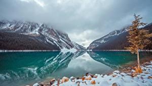Фото Канада Озеро Парки Камень Горы Банф Снег Деревья lake Louise