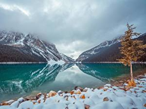 Фото Канада Озеро Парки Камень Горы Банф Снегу Дерева lake Louise Природа
