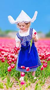 Фотографии Поля Тюльпаны Девочки Платье Шляпа Дети