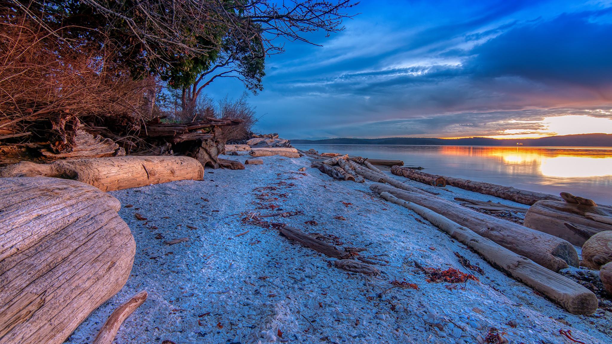 Картинка Япония Numata Бревна Природа Снег Рассветы и закаты берег речка 2048x1152 Реки Побережье