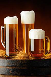 Картинка Пиво Бочка Кружка Втроем Пеной Колосок Еда