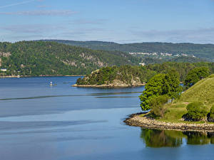 Картинки Норвегия Лес Залив Холмы Oslo Fjord