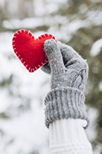 Фото День всех влюблённых Сердечко Рука Перчатках