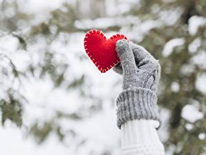 Фото День святого Валентина Серце Рука Перчатках