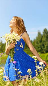 Фотографии Букеты Ромашки Блондинки Платья Улыбка молодые женщины
