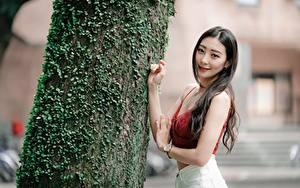 Обои Азиаты Ствол дерева Руки Размытый фон Волосы Взгляд Девушки