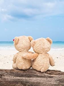 Обои Мишки Море Любовь Обнимаются Природа