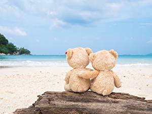 Обои Мишки Море Любовь Объятие Природа
