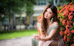 Картинка Азиаты Боке Платья Сидит Шатенка Взгляд Руки Красивые девушка
