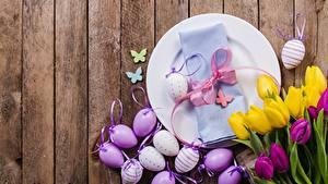 Фотография Тюльпаны Пасха Доски Яйца Тарелка Бантик Цветы