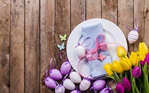 Фотография Тюльпаны Пасха Доски Яйцо Тарелке Бантик Цветы