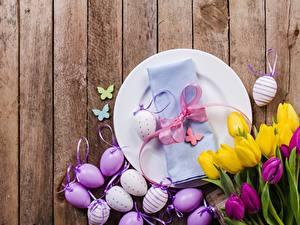 Фотография Тюльпан Пасха Доски Яйцо Тарелке Бантик Цветы
