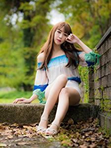 Обои Азиаты Листья Шатенки Руки Сидит Ног молодые женщины