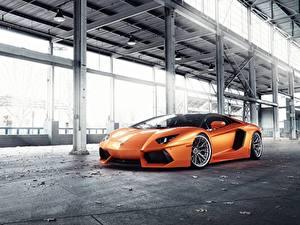 Картинка Lamborghini Оранжевая Predator, Aventador VAG машина