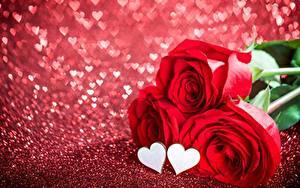 Фотография Розы День святого Валентина Сердечко Цветы