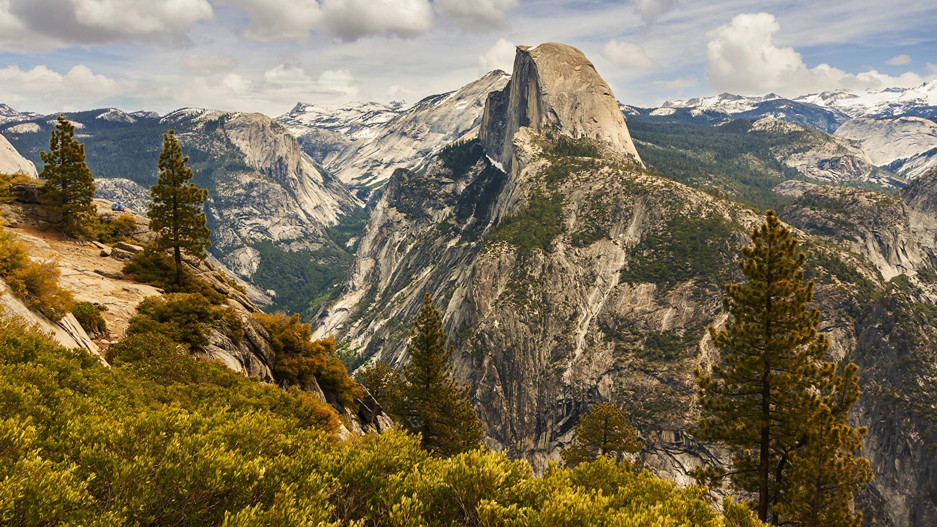 Обои для рабочего стола Йосемити америка Ель Горы Природа парк 1920x1080 США штаты ели гора Парки