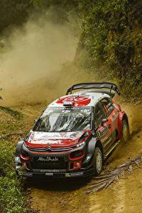Картинки Ситроен Стайлинг Металлик Гонки 2017-18 C3 WRC Авто