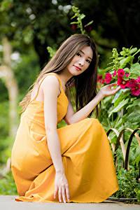 Обои Азиатки Боке Позирует Сидящие Платья Рука Шатенки Миленькие