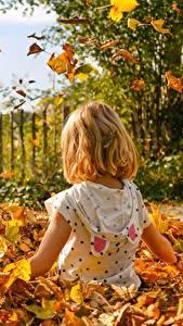 Картинка Осень Лист Сидящие Девочка Дети