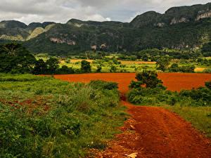 Фотографии Куба Горы Поля Трава Pinar del Rio