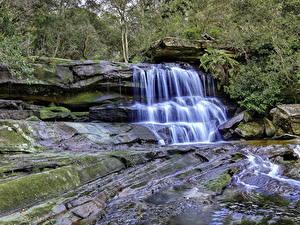 Обои Водопады Камень Мха Ручеек