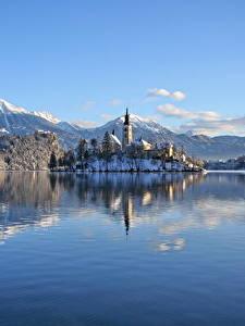 Картинки Словения Озеро Горы Замки Зима Альпы Снег Lake Bled, Bled castle Природа