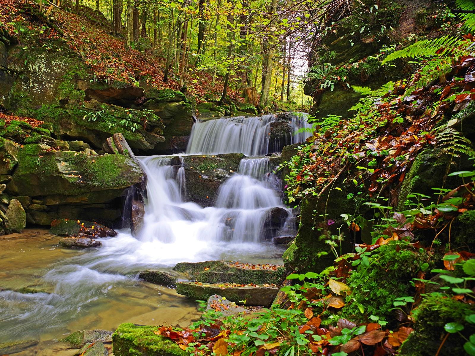 Фотография лист Польша Bieszczady осенние Природа Водопады Мох Камень 1600x1200 Листья Листва Осень мха мхом Камни