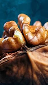 Фотографии Макросъёмка Крупным планом Орехи Walnut