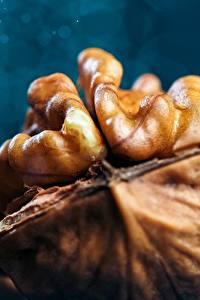 Фотографии Макросъёмка Крупным планом Орехи Walnut Продукты питания