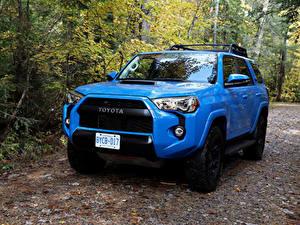 Обои Тойота Внедорожник Голубой Металлик 2015–19 4Runner TRD Pro Авто