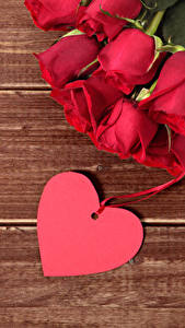 Фотография День всех влюблённых Розы Доски Красная Сердечко Цветы