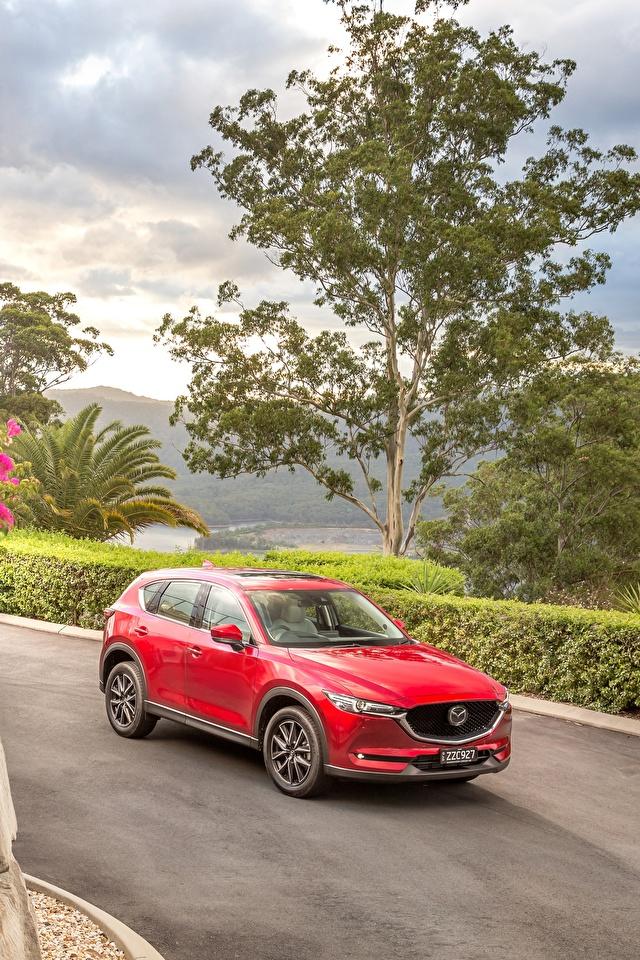 Картинка Mazda 2017 CX-5 Akera красных машина Металлик 640x960 для мобильного телефона Мазда Красный красные красная авто машины автомобиль Автомобили