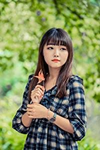 Картинки Азиатки Боке Платья Рука Шатенки