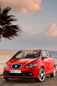 Картинка Seat Пальмы Красных Металлик Altea FR Worldwide, 2006–09 авто