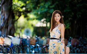 Фото Азиатка Размытый фон Платье Миленькие Шатенка молодые женщины