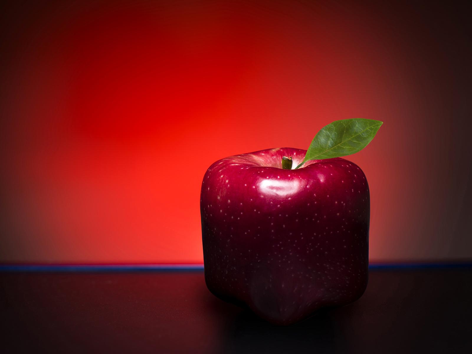 Обои красная Яблоки оригинальные Пища Крупным планом 1600x1200 красных красные Красный Креатив Еда Продукты питания вблизи