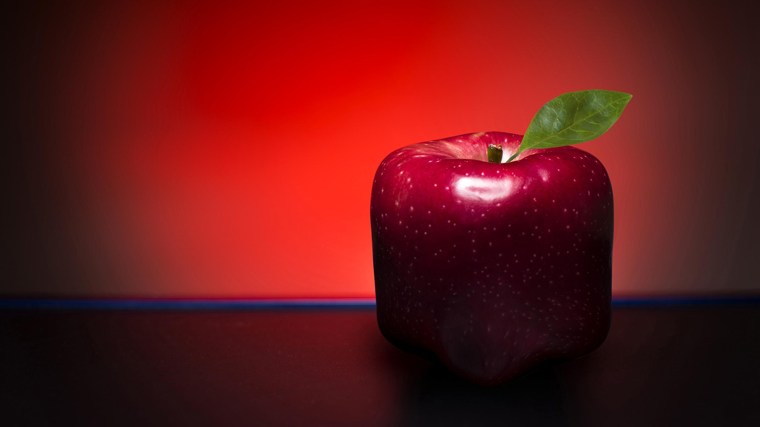 Обои красная Яблоки оригинальные Пища Крупным планом 2560x1440 красных красные Красный Креатив Еда Продукты питания вблизи
