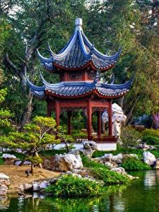 Картинки Пагоды Парки Сады Штаты Калифорния Японские San Marino Природа