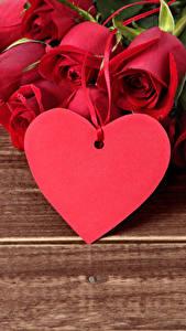 Фотография День всех влюблённых Розы Доски Красный Сердечко Цветы