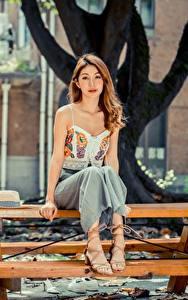 Фотографии Азиаты Боке Столы Сидит Шатенка Милые девушка