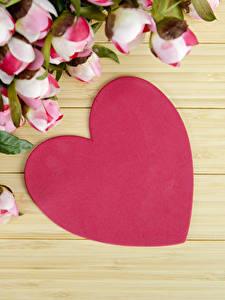 Фотография День святого Валентина Пион Доски Сердце Цветы