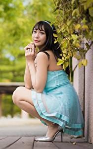 Фото Азиаты Размытый фон Позирует Сидит Платья Брюнетка Туфлях молодая женщина