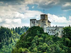 Картинки Польша Замки Леса Горы Castle In Niedzica, Pieniny mountains Природа