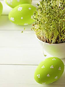 Фотографии Праздники Пасха Доски Яйца Салатовые