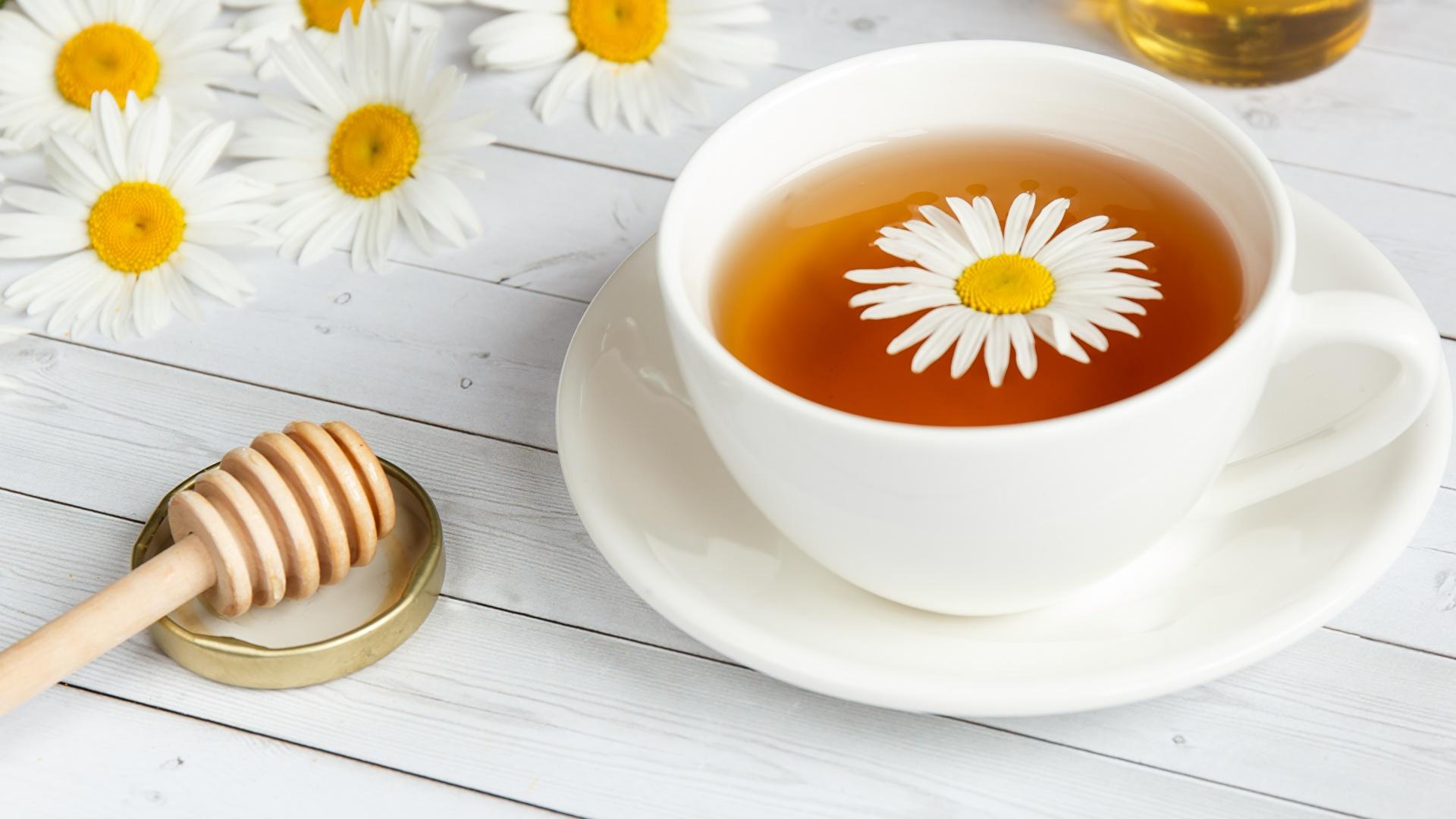 Фото Чай Ромашки чашке блюдца Продукты питания 1920x1080 ромашка Еда Пища Чашка Блюдце