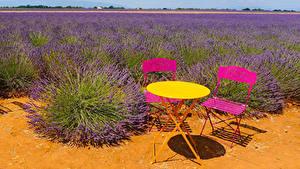 Фотографии Франция Поля Лаванда Столы Стулья Puimichel Природа