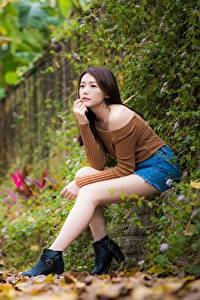 Обои Азиатки Боке Сидящие Ног Листва Шатенки девушка