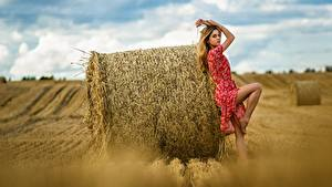 Фото Поля Сено Платье Поза Ananda Dmitry Medved Девушки