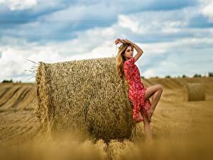 Фото Поля Сено Платье Поза Ananda Dmitry Medved